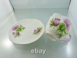Dainty Thistle Tea Cup & Saucer Set 13820 By Shelley England