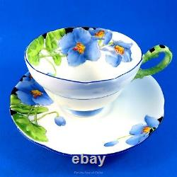 Rare Star Mark Iceland Poppy Painted Paragon Tea Cup and Saucer Set